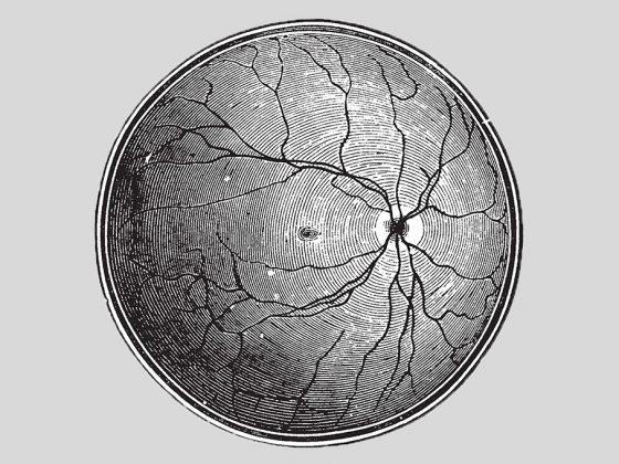 Monochrome Retina - AEYE Health