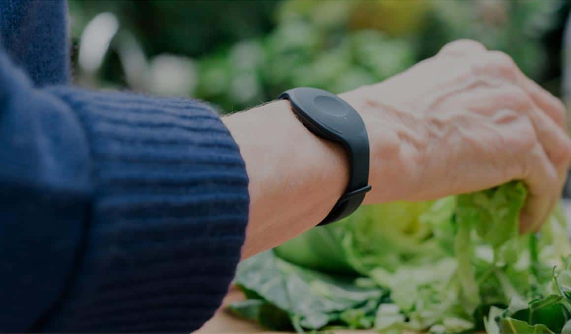 Nectarine remote monitoring wearable for seniors